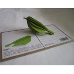 Oiseau en bois carte 3D Vert