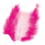 lot de 15 plumes fushia rose tendre