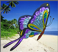 window colors peinture repositionnable